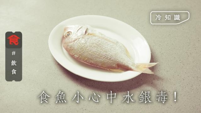 【小心水銀毒】吞拿魚都有份!營養師話呢種魚水銀最高 想生B半年內唔好食